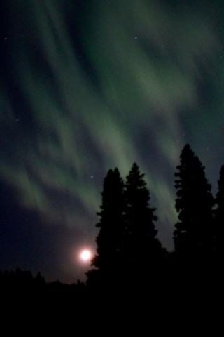 northern lights and the moon / rejoicing hills