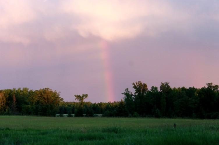 rainbow / rejoicing hills