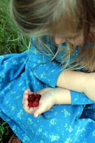 handful of raspberries / rejoicing hills