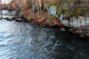 river's edge / rejoicing hills